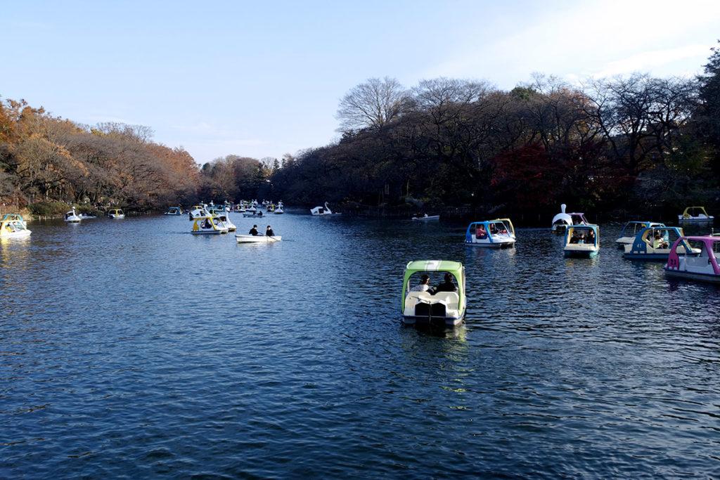 2016年12月4日撮影の井の頭公園の池