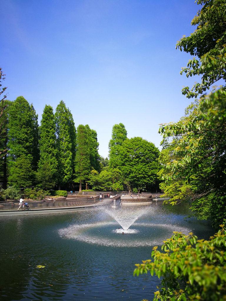 2017年5月21日に撮影した井の頭公園の池